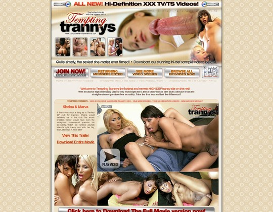 track.temptingtrannys.com