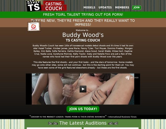 ts-castingcouch.com