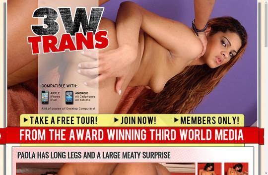 3 W Trans